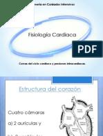 Ci Cardiologia