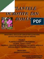 Plantele Ocrotite Din România