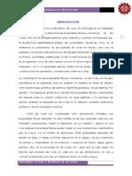 INFORME TERMINADO tecno PARA IMPRIMIR.docx