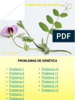15problemasgentica-120228034147-phpapp02