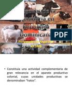 Orígenes de La Ganadería en República Dominicana