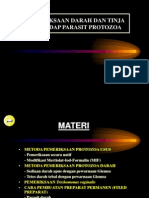 Pemeriksaan Lab Protozoa