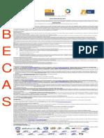 PRONABESpropuestaconvocatoria2012-2013-1