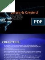 Sintesis de Colesterol 2