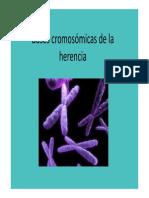 Basescromosomicas_8551