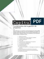 Cap1 - Fudamentos de La Gestion de Proyectos