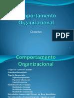 Comportamento Organizacional - Cap[1]. I