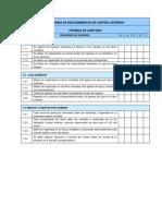Programa de Procedimientos de Control Internos
