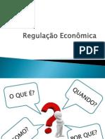 Regulacao_Economica_2013