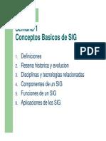 Conceptos Basicos de SIG
