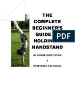 Logan Christopher - Guide to Handstand