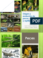 Origen y Evolución de Peces, Anfibios y Reptiles