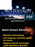Histo (Pert.2)