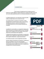 ENSAYO DESMIELINIZACIÓN SEGMENTARIA.docx