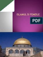 Islamul Si Femeile