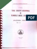 Anatomia Omului - Tubul Digestiv Abdominal Si Glandele Anexe (Viorel Ranga) Vol 3