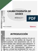 Modulo 7 Cromatografia de Gases