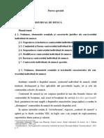 Tema8.Contr.individual de Munca