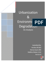 B Urbanization & Environmental Degradation