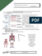 Hematopoesis - Dr. Suryanto