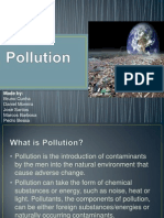 Pollution English Work.pptx
