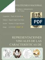 Representaciones Visuales de las características_de_Miguel Angel Cruz N