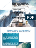 diapositivas stunami(1)