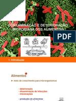 Contaminação e Deterioração de Alimentos Aula 04 Reduzida