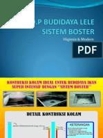 Sop Budidaya Lele Sistem Boster