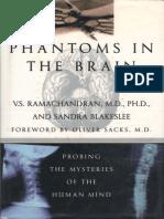 Phantoms of the human brain