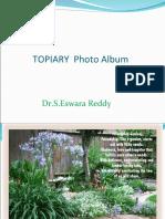 Topiary Photo Album