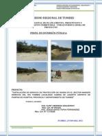 Perfil Defensa Rio Tumbes