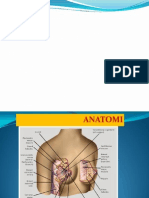 diagnosa DF.ppt.pptx