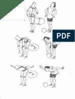 Flexibilidade Da Coluna Vertebral - Dibujo