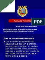 Animales Ponzoñosos 2013pdf