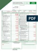 Formulario 210 Diligenciado Primer Ejercicio 2014