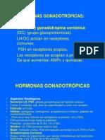 6 Gonadotropinas
