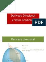06_Derivada Direcional e Vetor Gradiente