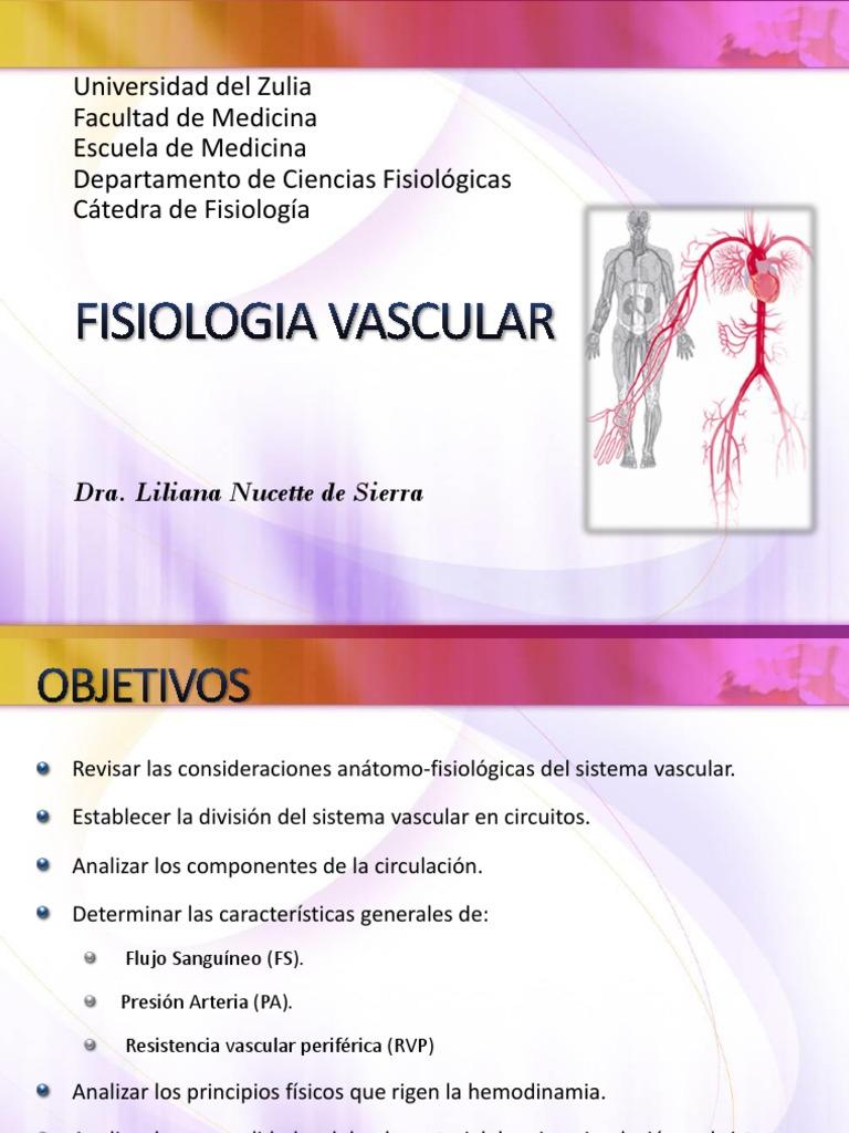 Circuito Vascular : Fisiologia vascular