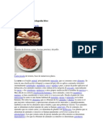 Carne Teorias