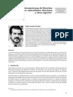 Gonza Lez Morales La Comisio n Interamericana de Derechos Humanos
