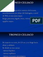 TRONCO+CELIACO
