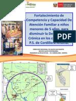 1ro Cordillera Andina DIRESA San Martin (1)