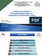 Diseno Modelo Organizacional Consorcio Siderurgico Piar