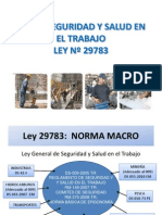 EXPOSICIÒN LEY 29783 11- 10-2013