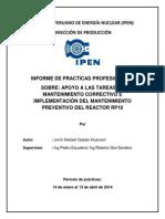 Informe Final Practicas Pre Prod