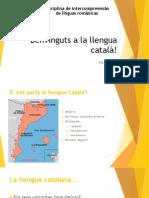 Benvinguts a La Llengua Català!
