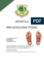 5. Apostila i Reflexologia Podal Para Impressão