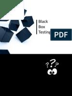 4 - BlackBox Testing