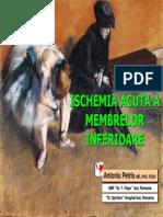 AMG4 Curs Ischemia Acuta